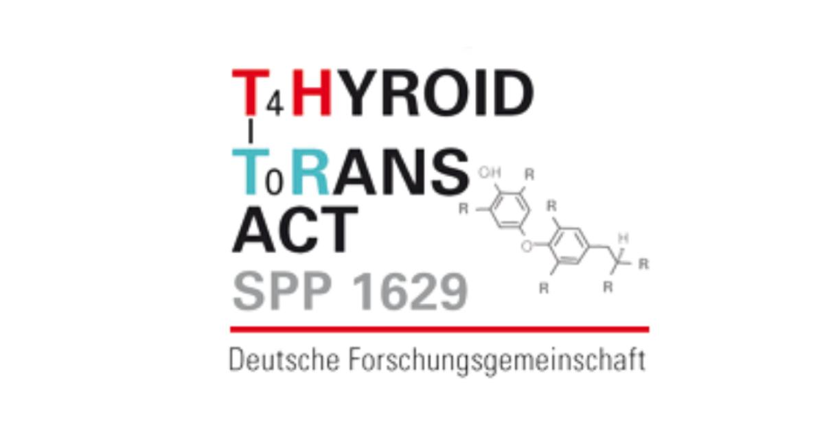 Thyroid Trans Act: Forskningsprosjekt i Tyskland