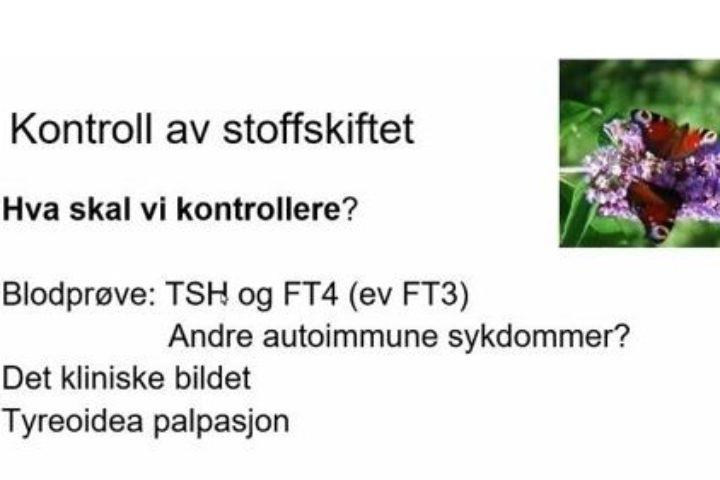 Oslo og Follo lokallag tilpasser seg digitalt