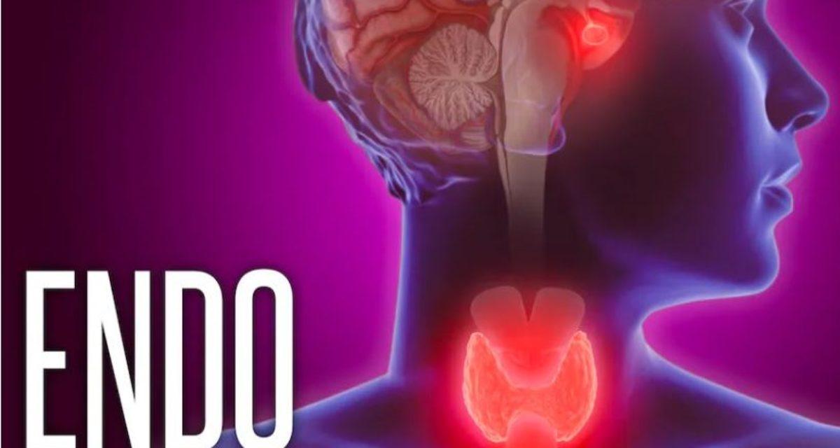 ENDO 2021: – Behandling av lavt stoffskifte bør individualiseres, sier forskere